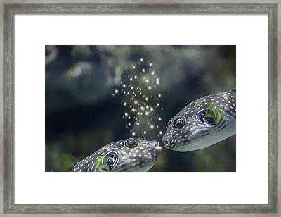 White-spotted Puffer Fish Kissing - Painting Framed Print by Ericamaxine Price