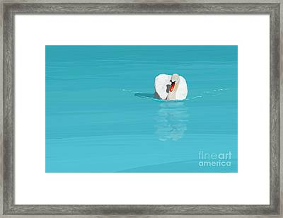 White Swan Blue Lake Framed Print