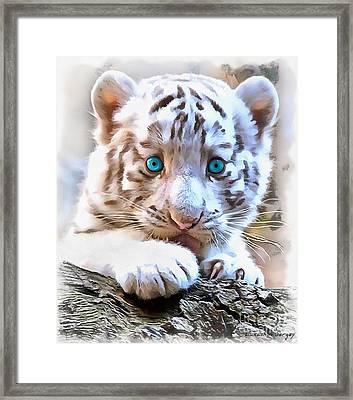 White Tiger Cub Framed Print