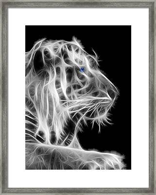 Framed Print featuring the photograph White Tiger by Shane Bechler