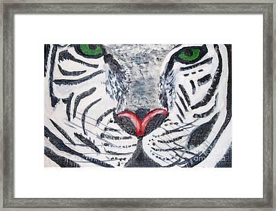 White Tiger Framed Print