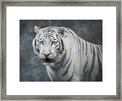 White Tiger Framed Print by Wim Lanclus
