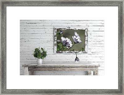 Framed Print featuring the photograph White Timber Cottage By Kaye Menner by Kaye Menner