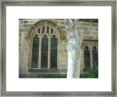 White Tree By St Andrews Framed Print by Adrianne Wood