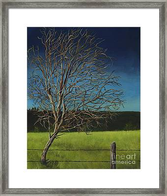 White Tree Of Worden Framed Print