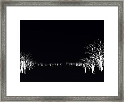 White Tree Framed Print