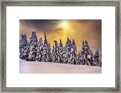 White Trees Framed Print by Alessandro Giorgi Art Photography