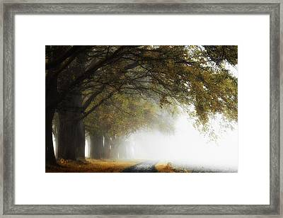 Fading Into Nothing Framed Print by Martin Podt