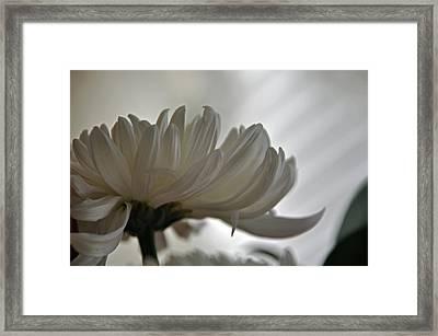 White Waves Framed Print by Teresa Blanton