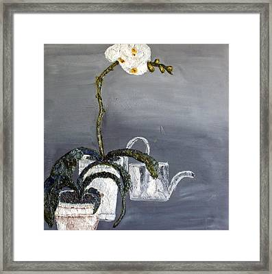 White Wild Orchid Framed Print