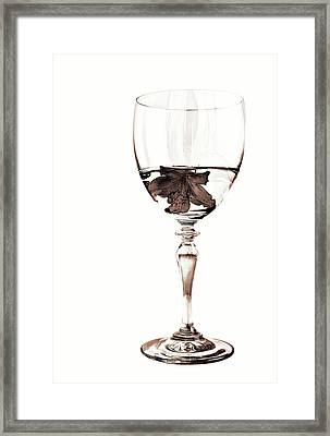 White Wine In Sepia Framed Print by Marcia Colelli