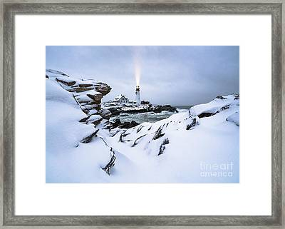 White Winter Framed Print by Benjamin Williamson