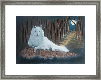 White Wolf Framed Print by Charles Hubbard