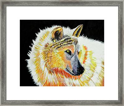 White Wolf Framed Print by Susan Robinson