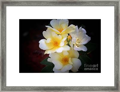 White Yellow Hues Framed Print