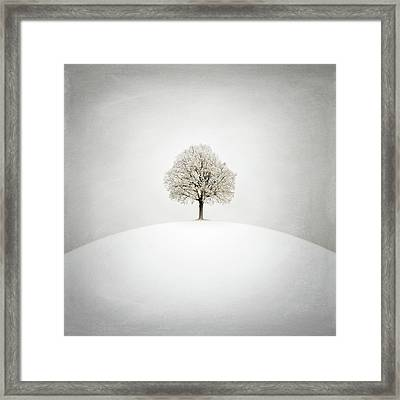 White Framed Print by Zoltan Toth