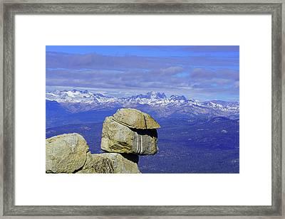 Whitebark Vista II Framed Print