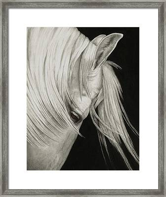 Whitefall Framed Print