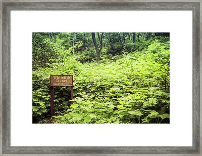 Framed Print featuring the photograph Whitefish Dunes Entrance by Joel Witmeyer