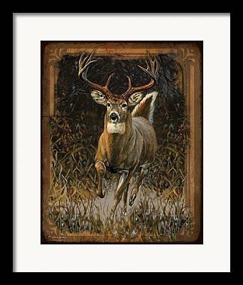 Whitetails Framed Prints