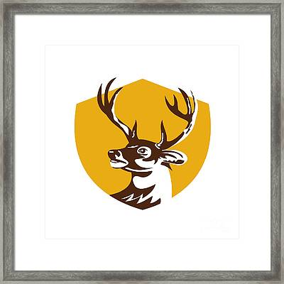 Whitetail Deer Buck Head Crest Retro Framed Print by Aloysius Patrimonio