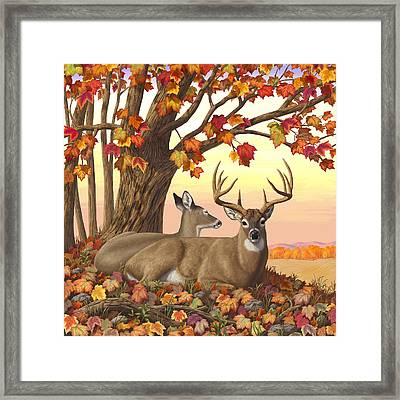 Whitetail Deer - Hilltop Retreat Framed Print