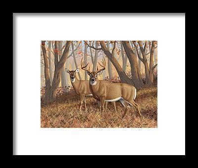 Monster Buck Framed Prints