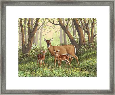 Whitetail Doe And Fawns - Mom's Little Spring Blossoms Framed Print