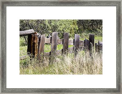 Framed Print featuring the photograph Who Ate The Fence by Phyllis Denton