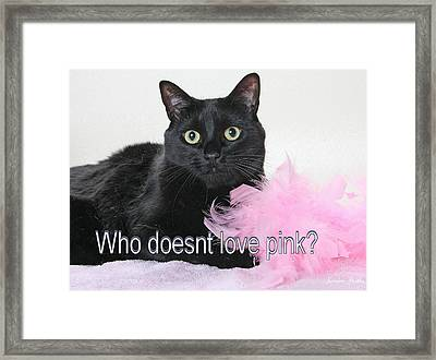Who Doesnt Love Pink  Framed Print