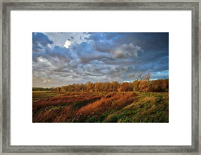 Who Has Seen The Wind? Framed Print