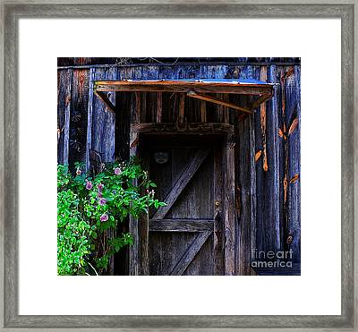 Who Is Living Here Framed Print by Barbara Teller