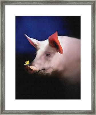 Who Is Snooty Framed Print by Robert Foster