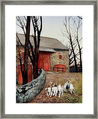 Who Let The Dogs Out Who Who Framed Print by Haldy Gifford