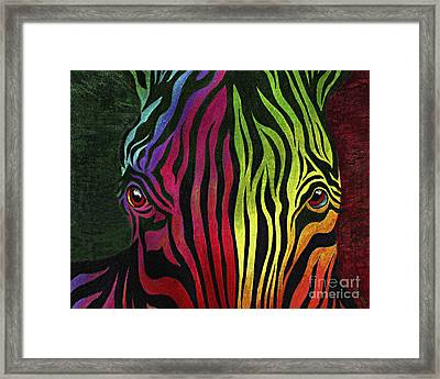 What Are You Looking At Framed Print by Peter Piatt