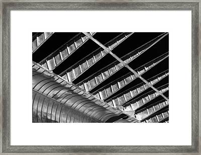 Who Wants Ribs? Framed Print