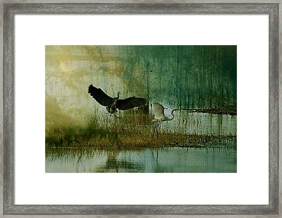 Who Was Here First Framed Print