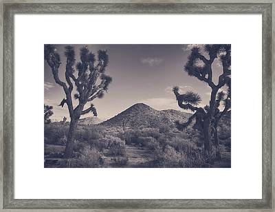 Who We Used To Be Framed Print