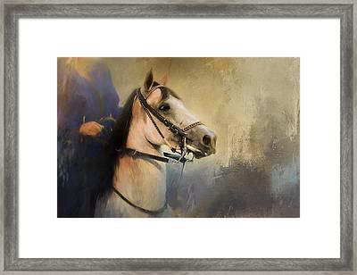 Whoa Slow Down Horse Art Framed Print by Jai Johnson