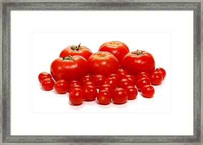 Whole Lotta Tomatoes Framed Print