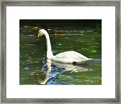 Framed Print featuring the painting Whooper Swan Gratitude by Diane E Berry