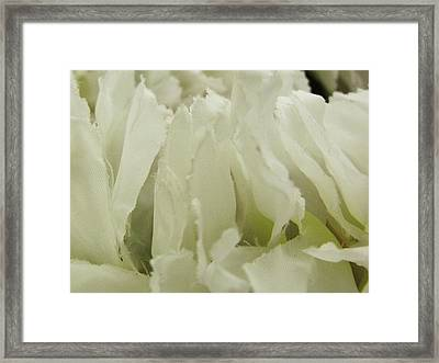 Whorl Framed Print by Anna Villarreal Garbis