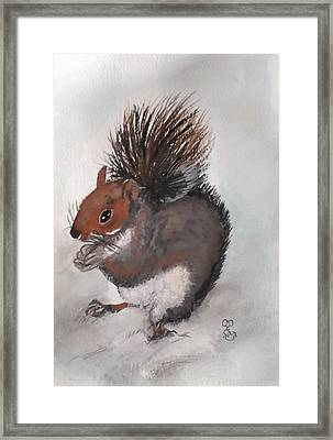 Who's Had Me Nuts Framed Print