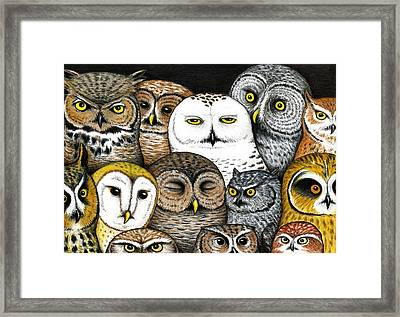 Who's Hoo Framed Print by Don McMahon