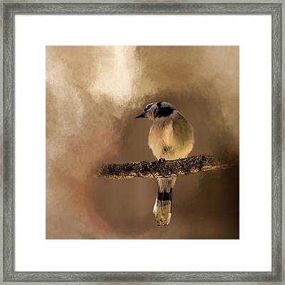 Who's There? Framed Print by Cyndy Doty