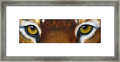 Whos Watching Who   Tiger Framed Print by Darlene Green