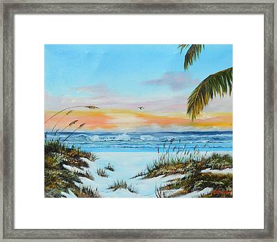 Why Not Siesta Key Framed Print