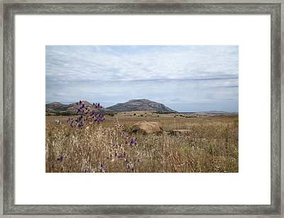 Wichita Landscape Framed Print