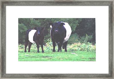 Wicked Mean Oreos Framed Print by Mike Breau