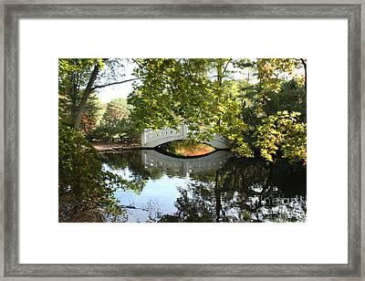 Wickham Park Bridge Framed Print by B Rossitto